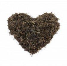 heart-shaped-soil