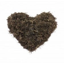 heart-shaped-soil