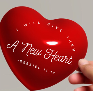 https://ladyinwaiting222.com/2016/12/08/whats-the-condition-of-your-heart