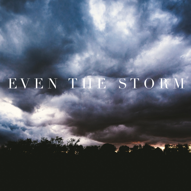 https://ladyinwaiting222.com/2017/03/11/even-the-storm