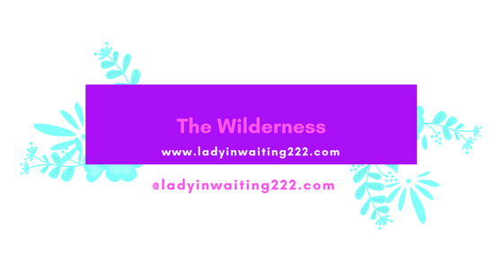 https://ladyinwaiting222.com/2017/09/28/the-wilderness