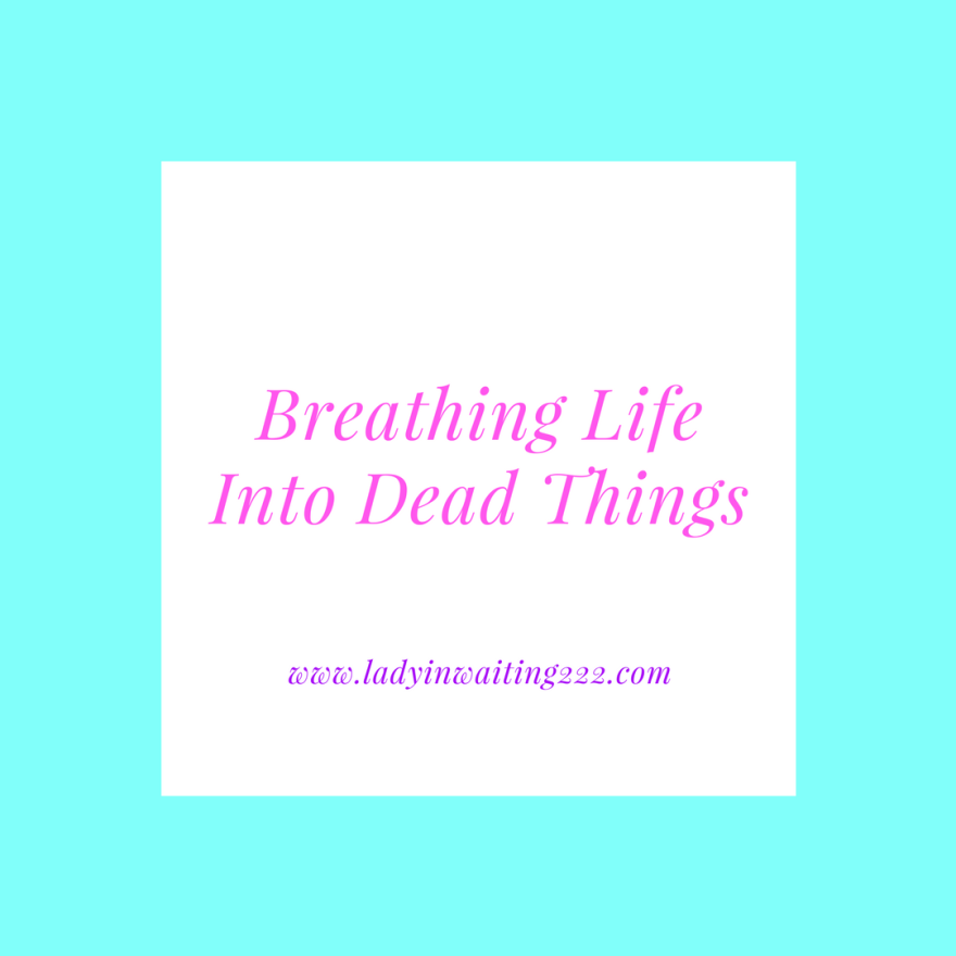 https://ladyinwaiting222.com/2018/02/23/breathing-life-into-dead-things-sitting-at-his-feet-online-bible-study