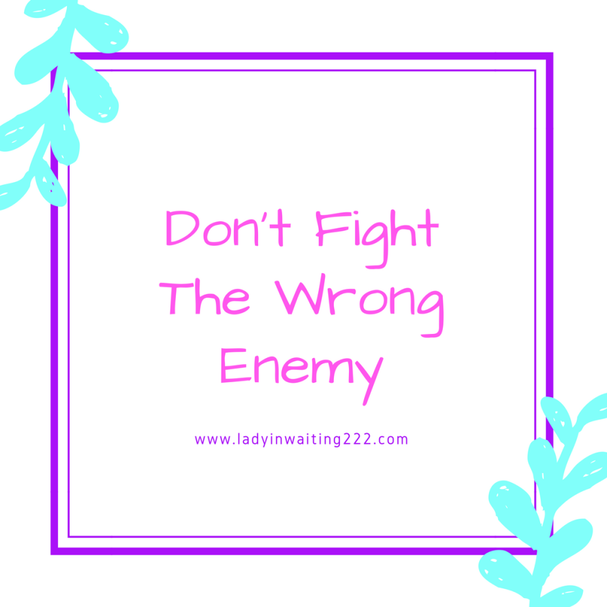 https://ladyinwaiting222.com/2018/03/17/dont-fight-the-wrong-enemy
