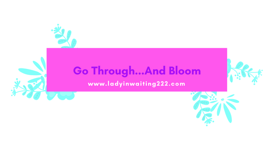 https://ladyinwaiting222.com/2018/03/22/go-through-and-bloom