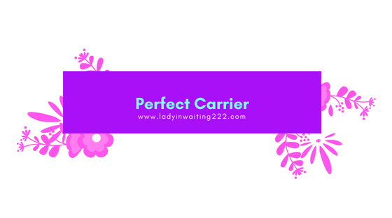 https://ladyinwaiting222.com/2018/05/16/weekly-scripture-perfect-carrier