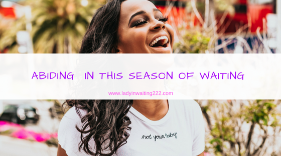 https://ladyinwaiting222.com/2018/08/12/weekly-scripture-abiding-in-this-season-of-waiting